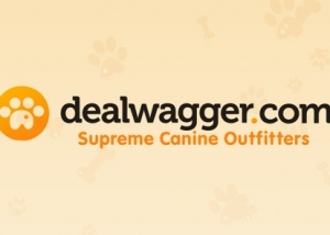 Dealwagger copy